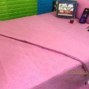 chăn ga gối đơn sắc micron màu hồng