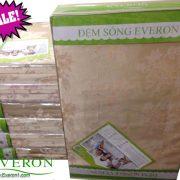 NPP đệm sóng Everon chính hãng tại Hà Nội