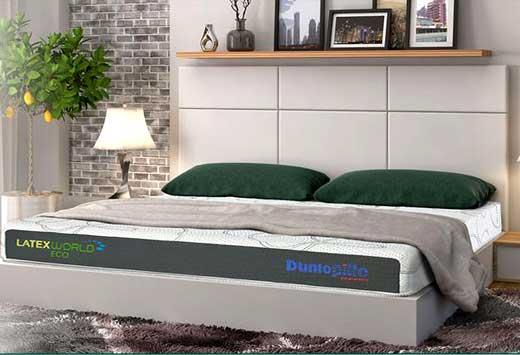 nệm đệm cao su Dunlopillo Latex Word Eco chính hãng