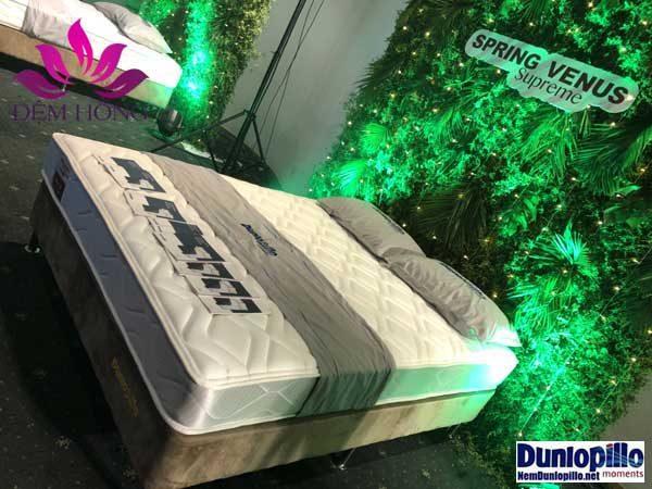 Địa chỉ cung cấp nệm lò xo Dunlopillo uy tín tại Việt Nam