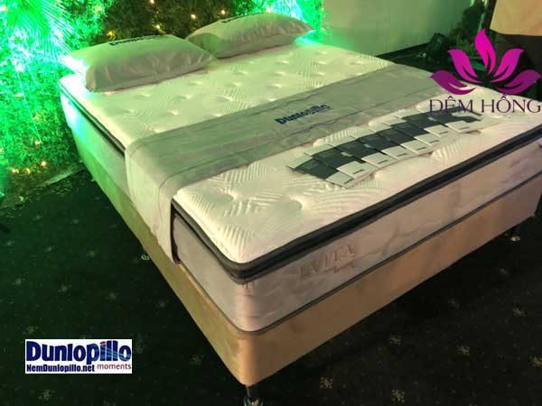 Đệm lò xo túi siêu nhỏ Evita công nghệ độc quyền của Dunlopillo